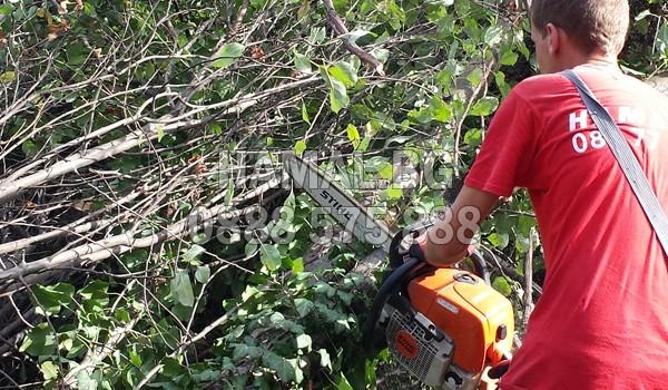 Почистване на градини и дворове с рязане на храсти