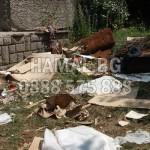 Почистване на градини и дворове